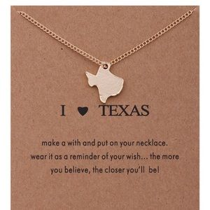Jewelry - 4 for $25⚡️Texas necklace